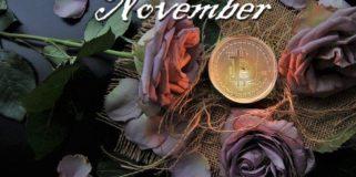 Bitcoin Fundamentals Briefing, November 2020
