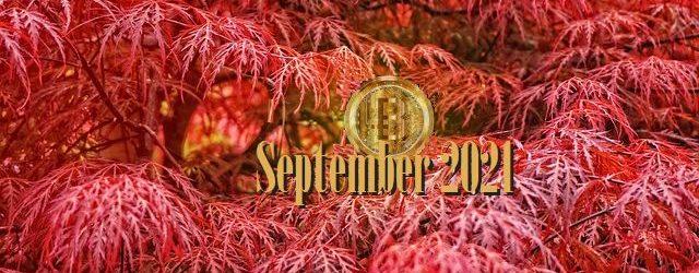 Bitcoin Fundamental Briefing, September 2021