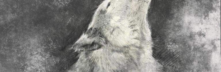 Binary Wolf Hunter and Hero – A Tribute to Simona Weinglass