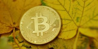 Bitcoin Fundamentals Briefing, October 2020