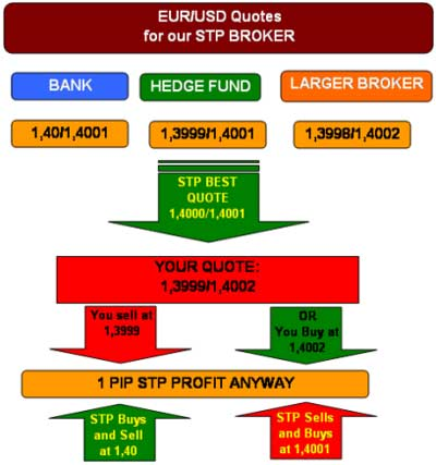 How an STP broker makes money - Forex School
