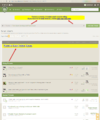 fpa new traders court suggestion dedicated section above stickies and sitewide annoucement box.png