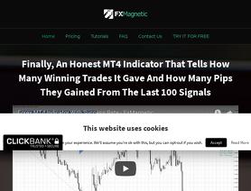 FXMagnetic.com (Rimantas Petrauskas)